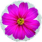 Шар (18''/46 см) Круг, Цветок, Гербера, Розовый, 1 шт.